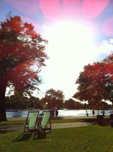 Sol no parque é tudo de bom